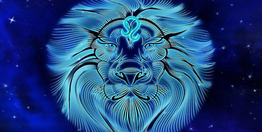 draguer une fille lion